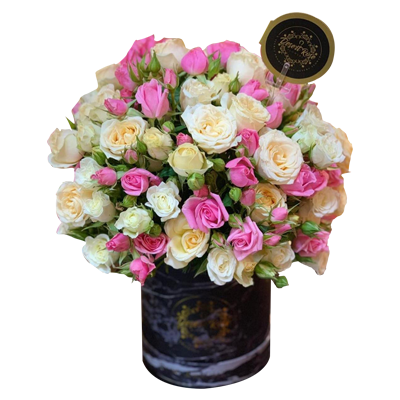 Mixed Baby roses In a Black Signature box